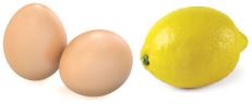 egglemon1